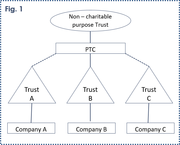 Private Trust Company - Non-Charitable Purpose Trust